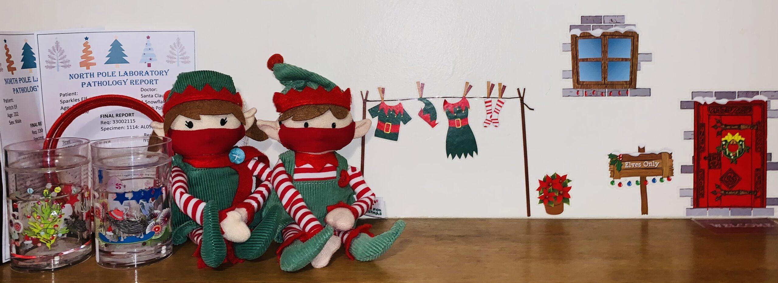 Elf on the shelf 2020